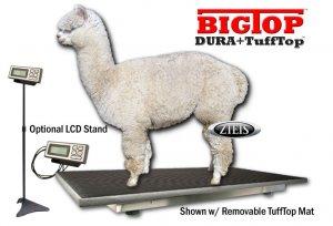 "700 lb  Heavy Veterinary and Livestock Scale 48"" x 24"" BigTop Cozy Pawz Platform w/ TuffTop Cover"