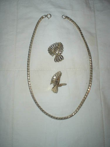 Silver Chain and Earrings