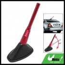 Auto Car Vehicle Mount Decorative Anti Static Electricity Antenna (AC-1111)
