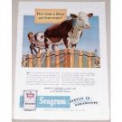 1951 Seagram Dried Grains Cow Art Color Print Ad
