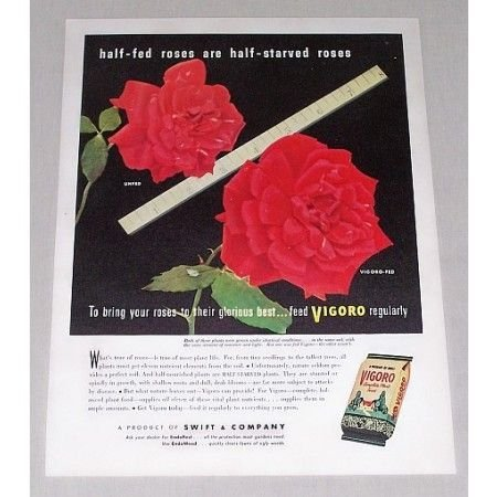 1946 Vigoro Complete Plant Food Roses Color Ad