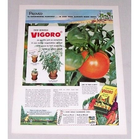 1952 Vigoro Complete Plant Food Tomatoes Color Print Ad