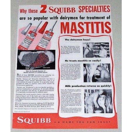 1951 Squibb Veterinary Penicillin Ointment Color Print Ad