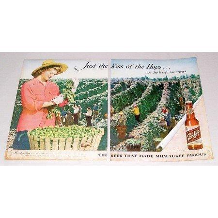 1946 Schlitz Beer Color 2 Page Color Print Ad - Harvesting Hops