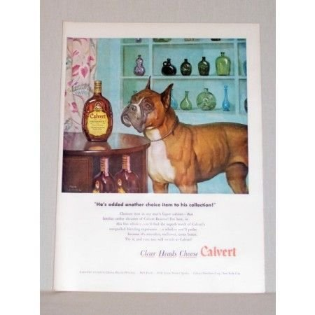 1948 Calvert Reserve Whiskey Bull Dog Boxer Animal Art Color Print Ad