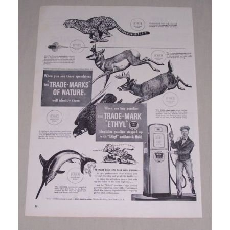 1949 Ethyl Gasoline Animal Art Vintage Print Ad - Trademarks of Nature