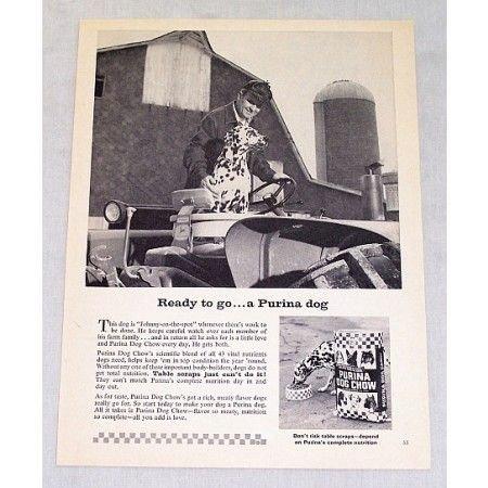 1964 Purina Dog Chow Farm Dalmation Vintage Print Ad