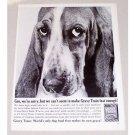 1960 Gaines Gravy Train Dog Food Basset Hound Vintage Print Ad