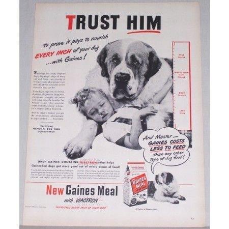 1948 Gaines Meal Dog Food Vintage Print Ad - Trust Him
