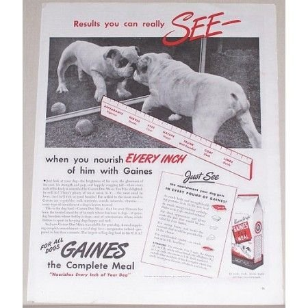 1945 Gaines Dog Meal Food Vintage Print Ad - Results You Can See