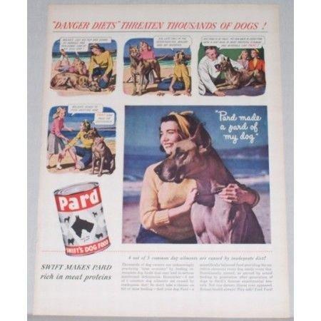 1948 Pard Swift's Dog Food Color Print Ad - Danger Diets