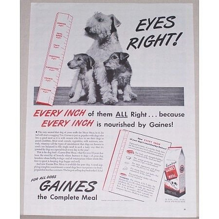 1944 Gaines Dog Meal Food Vintage Print Ad - Eyes Right!