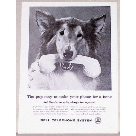 1961 Bell Telephone Systems Dog Animal Vintage Print Ad - Phone For A Bone