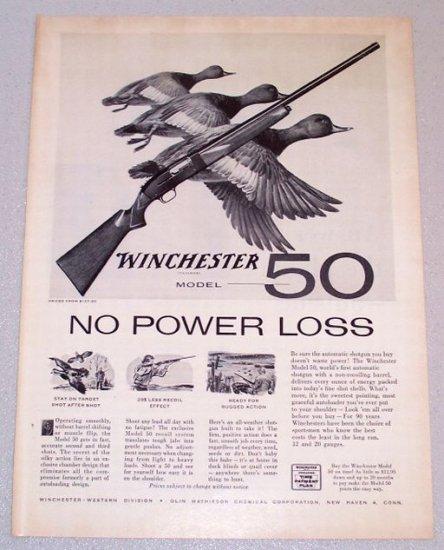 1956 WINCHESTER Model 50 Shotgun Duck Animal Art Print Ad