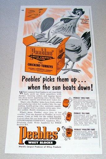 1955 Peeble's Free Choice Feed Chicken Art Print Ad