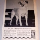 1959 Print Ad Purina Dog Chow