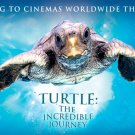 Turtle-The Incredible Journey