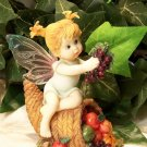 Kitchen Fairy Cornucopia