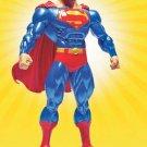 PUBLIC ENEMIES SERIES 1:SUPERMAN ACTION FIGURE