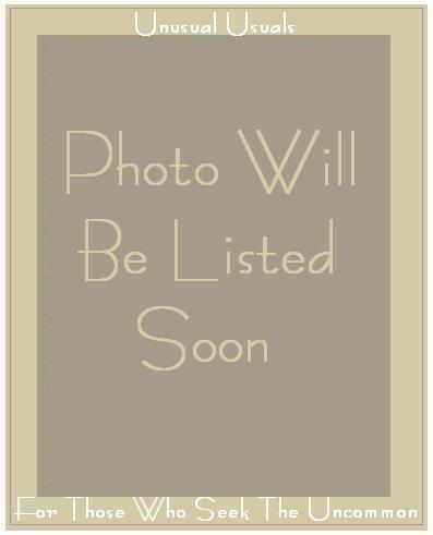CLEA Long Lined Gray Knit Skirt Engelhart Flax Medium M
