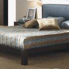 Celesta Modern Style Brown Leather Platform Bed