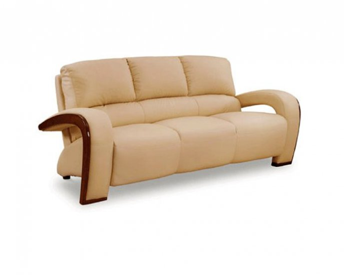 Stylish Tan or Beige Leather Sofa 705