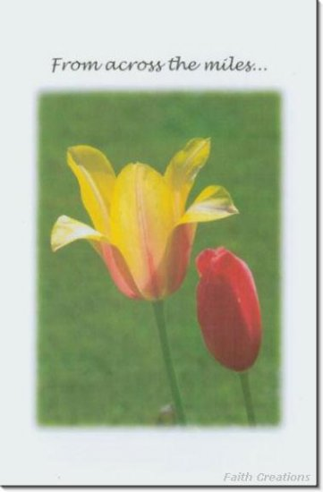 #M4U0393 Yellow Flower Across the Miles Greeting Card