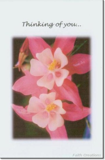 #M4U0136 Pink Flowers Thinking of You Greeting Card