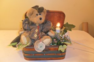 RARE 1997 Boyd's Bear Bailey & Friends Edmund light-up in Chest
