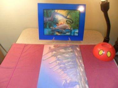 Disney Store Exclusive Commemorative Lithograph The Jungle Book
