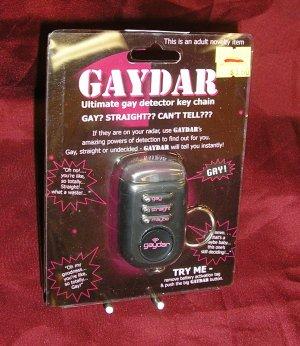 Gay Interest GAYDAR KEYCHAIN Funny GAG GIFT