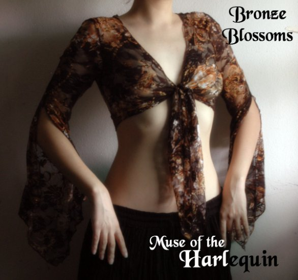 Bronze and Black Lace Tie Top
