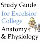 Anatomy & Physiology CD Study guide