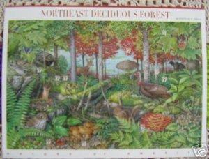 #3899 Northeast Deciduous Forest Souvenir Sheet 2004