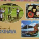 "Brand New ""SCENES OF OKINAWA""  postcard JAPAN"