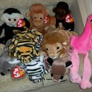 TY BEANIE BABIES - RETIRED - LOT of 9 ZOO ANIMAL BEANIES - NEW WITH TAGS!