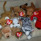 TY BEANIE BABIES - RETIRED - LOT #2 of 7 DOG & CAT BEANIES - NEW WITH TAGS!
