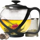 Primula, Black Tempo Glass Teapot with loose leaf tea infuser!