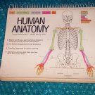 The Coloring Review Guide To Human Anatomy  stk#(2391)