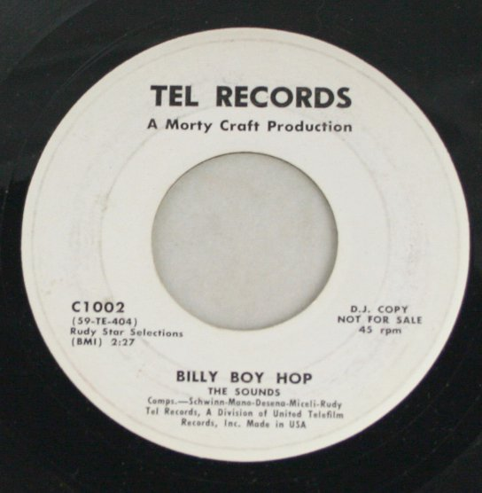 The Sounds-Billy Boy Hop-Tel Records-45 Record Promo
