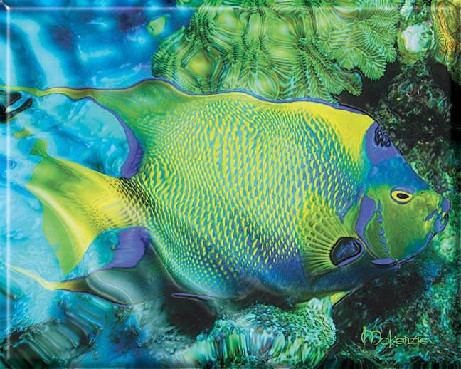 GREEN FISH DREAM