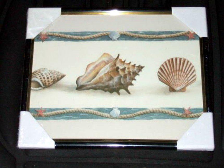 Nautical Seashells Framed Print Picture Wall Decor