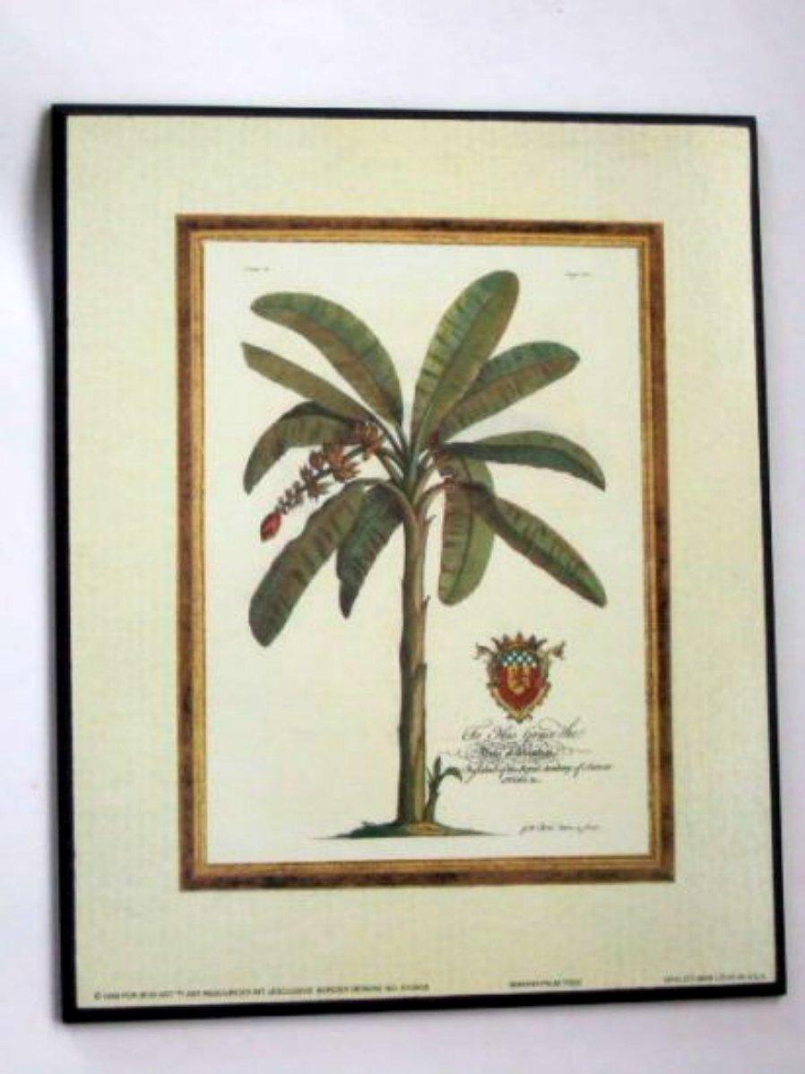 Banana Palm Tree Plaque Wall Decor
