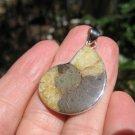 African Ammonite fossil pendant necklace dinosaur era 925 silver jewelry art