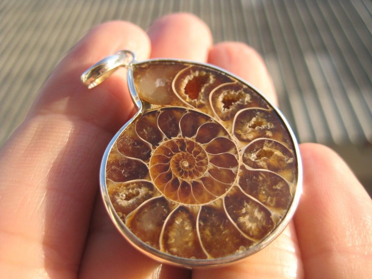 925 silver Africa Ammonite Fossil necklace pendant  Thailand jewelry art A30