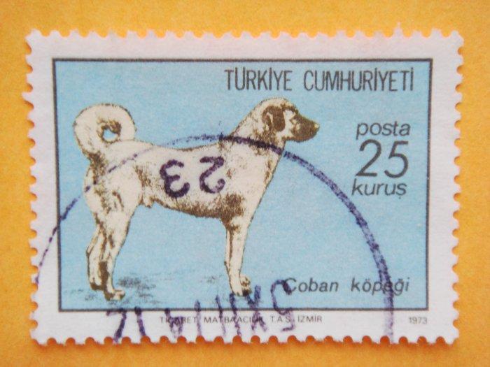 Turkish Postage Stamp introducing the Anatolian Shepherd Dog collectible stamp