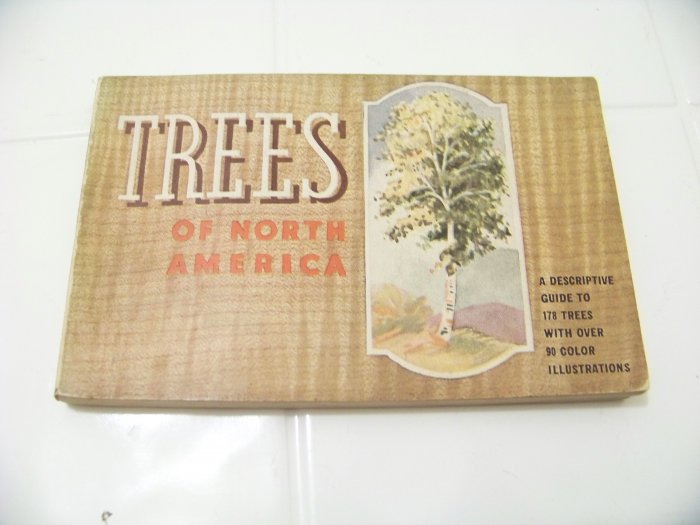 Trees of America  Trees you want to know by Donald Culrose Peattie