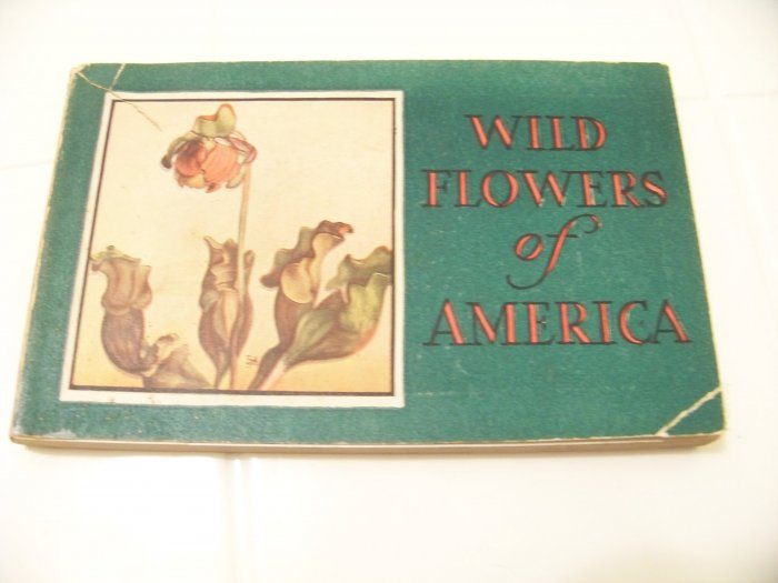 Wild flowers of America book