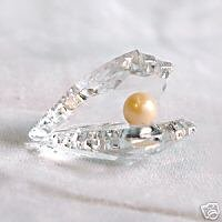 144 Stunning Crystal Oyster With Pearl