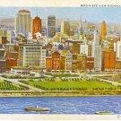 Bird's-Eye View Michigan Blvd., Chicago unused postcard post card